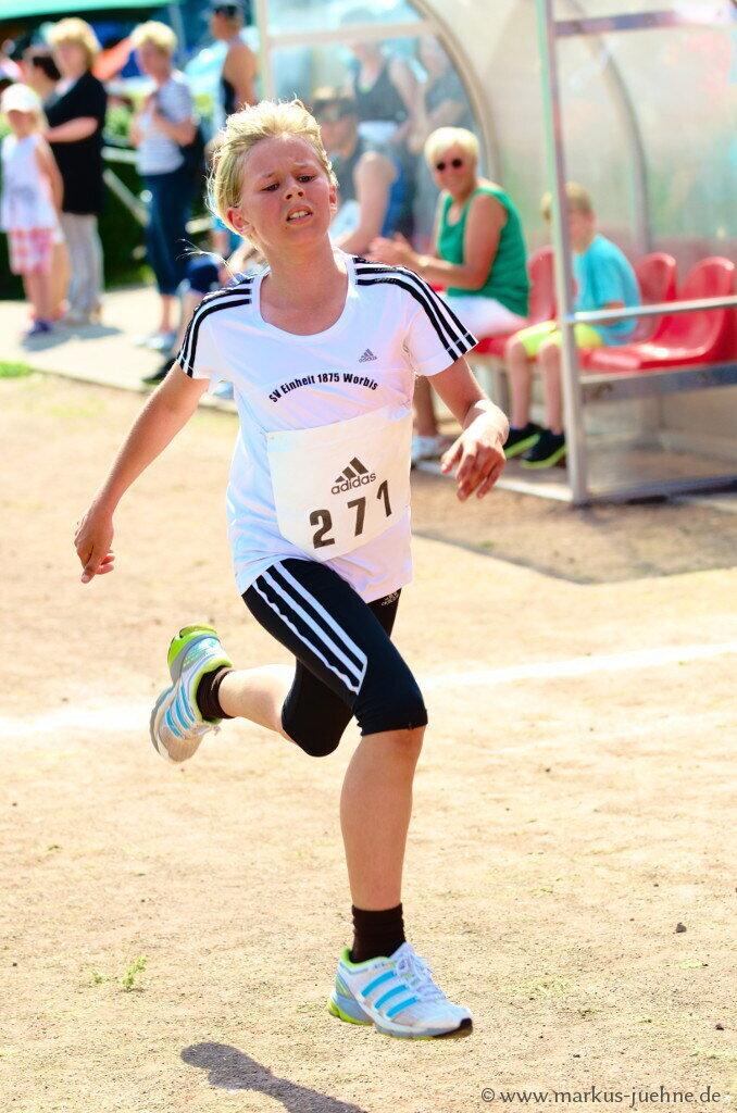 Drei-Laender-Lauf-2013-MJ-96.jpg